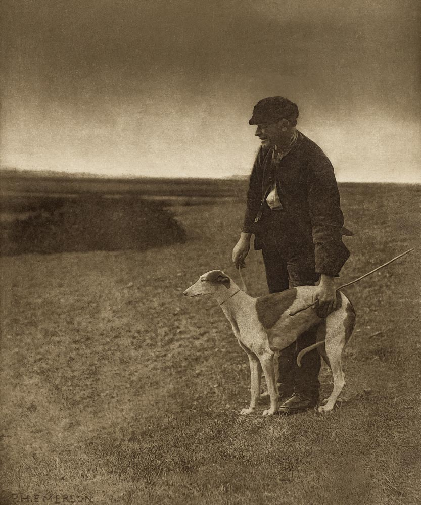 The Poacher - A hare in view 1887 Peter Henry Emerson